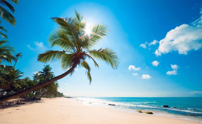 sunny-beach-wallpaper-hd