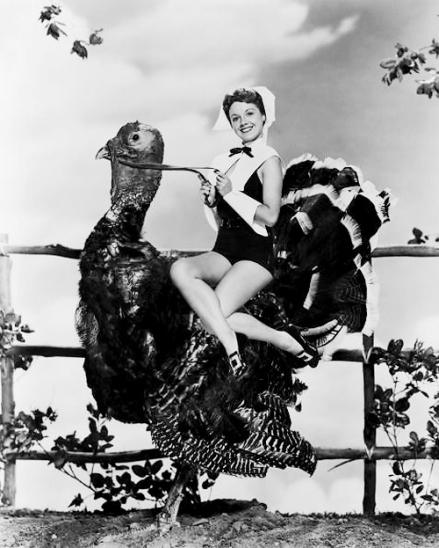 turkey ride